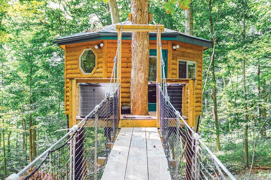 Safari Treehouse exterior in the fall