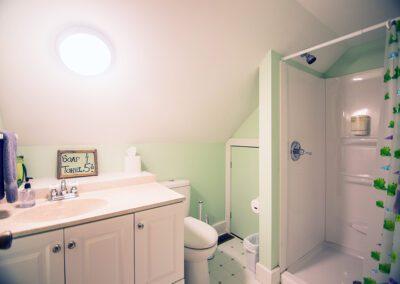 Frog bathroom at Blissful Ridge Lodge